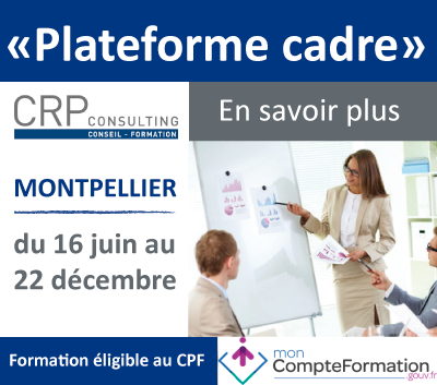 bandeau_plateforme_cadre_bge_crpconsulting_montpellier.png