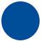 puce bleue BGE.jpg
