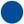 puce_bleue BGE.jpg